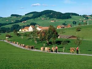 switzerland_1-300x225 Moving To Switzerland